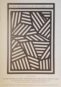 Sol LeWitt Forme di righe in bianco e nero, Museo di Capodimonte 1988